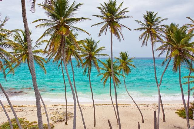 beach caribbean