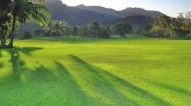 Best Time for Golf in Hua Hin